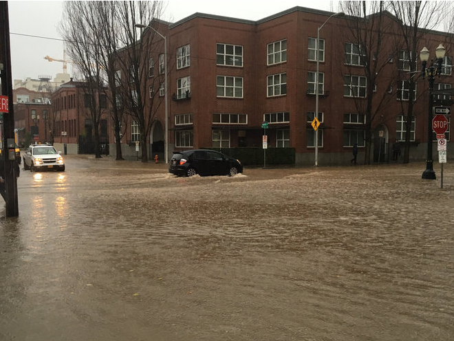 Staying Safe in a Flooded Portland